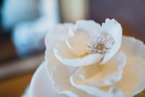 top of wedding cake flower Elmore court photography