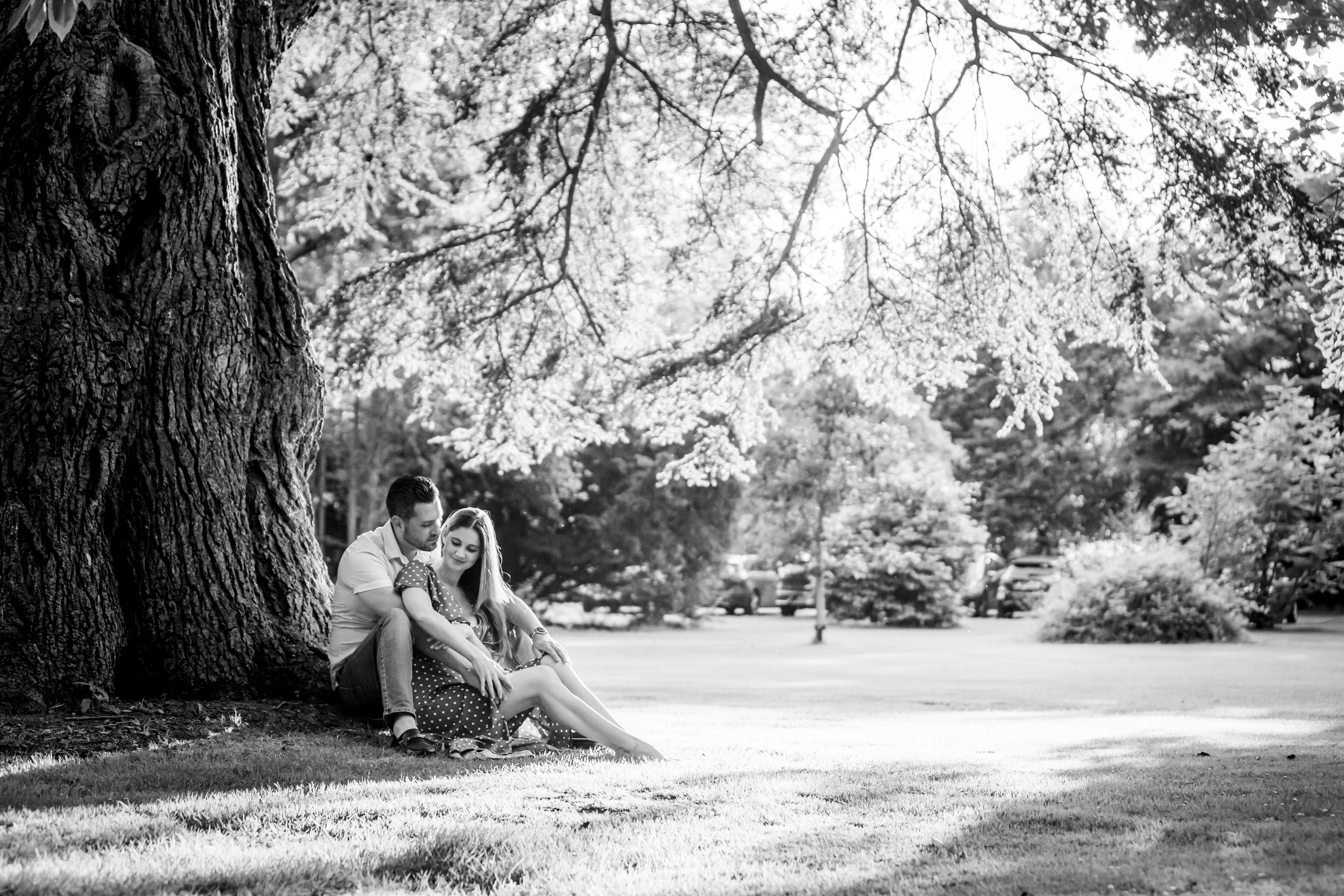 Couple sitting under tree at Tortworth Court surprise proposal wedding photographer