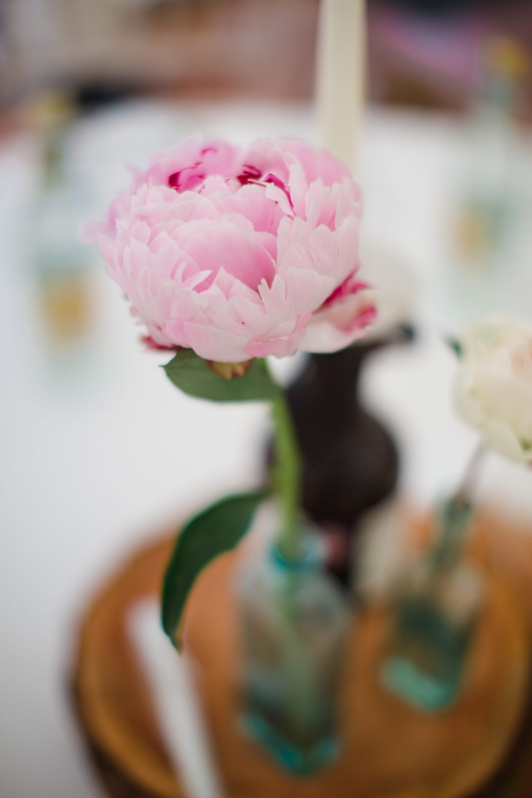 single flower in vase wild and co wedding