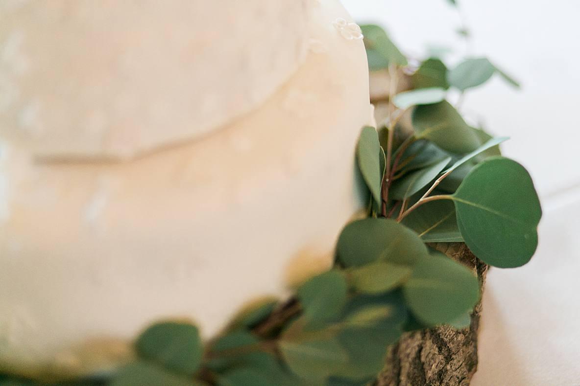 green leaves around wedding cake kingscote barn wedding photographers