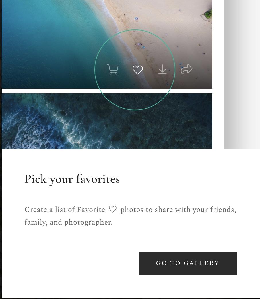 pixieset online gallery instead of usb wedding photography
