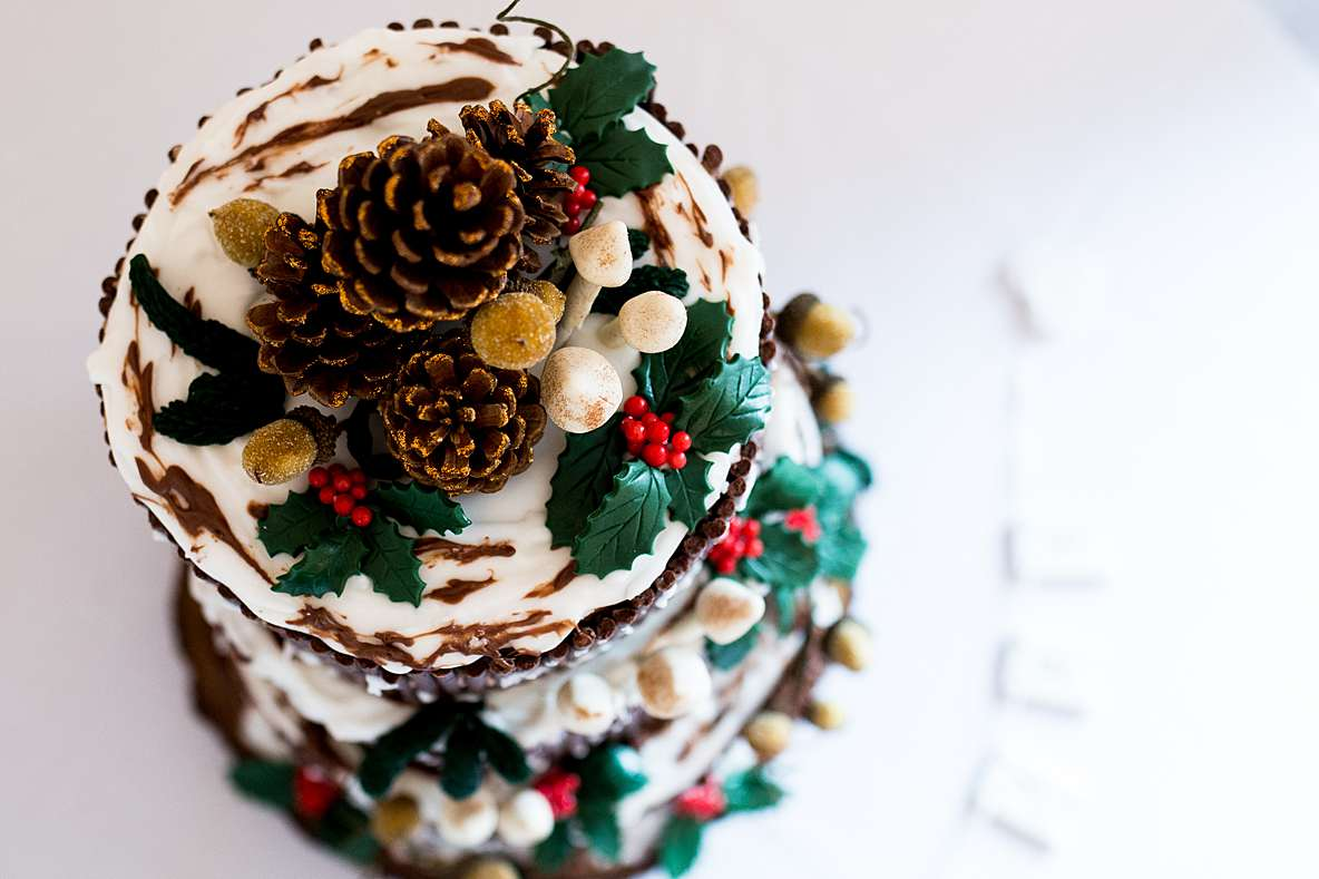 christmas wedding cake eastington park photographer